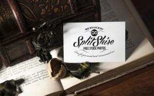 SplitShire-0589-800x500
